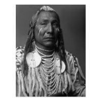Red Wing (Native American Man) Postcard