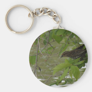 red winged black bird Fishing from a tree branch Keychain