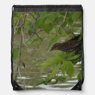 red winged black bird Fishing from a tree branch Backpack