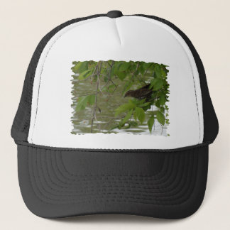 red winged black bird Fishing from a tree branch Trucker Hat