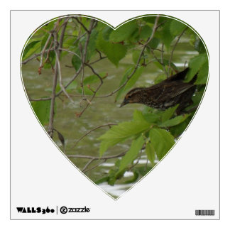 red winged black bird Fishing from a tree branch Wall Sticker
