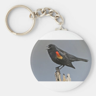 Red-Winged Black Bird Key Chain