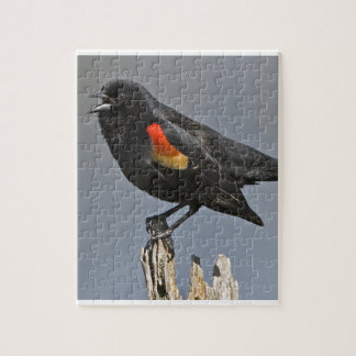 Red-Winged Black Bird Jigsaw Puzzles