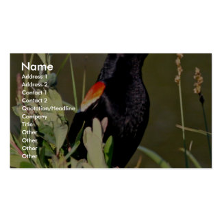 Red-winged Blackbird Business Cards