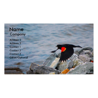 Red Winged Blackbird - busniness card template Business Card