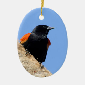 Red-winged Blackbird Ceramic Ornament