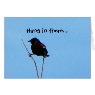 Red-winged Blackbird Get Well Card