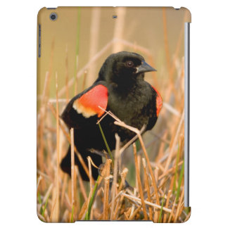 Red-winged Blackbird male singing iPad Air Cases