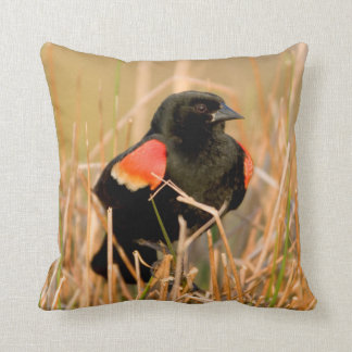 Red-winged Blackbird male singing Throw Pillow