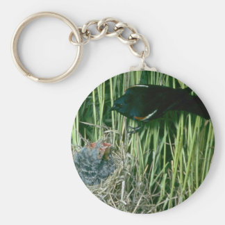 Red-winged Blackbird (male) with young Keychain