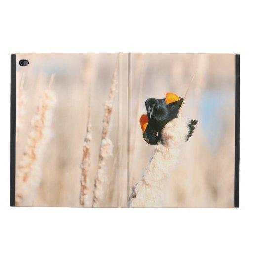 Red-winged Blackbird Powis iPad Air 2 Case