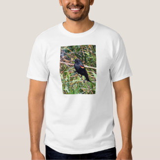 Red-winged blackbird T-Shirt