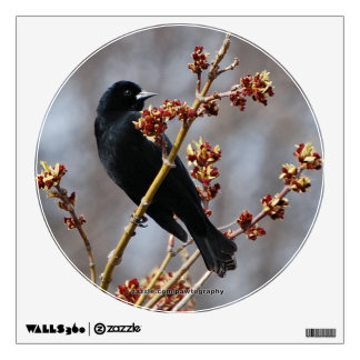 Red-winged Blackbird Wall Decal