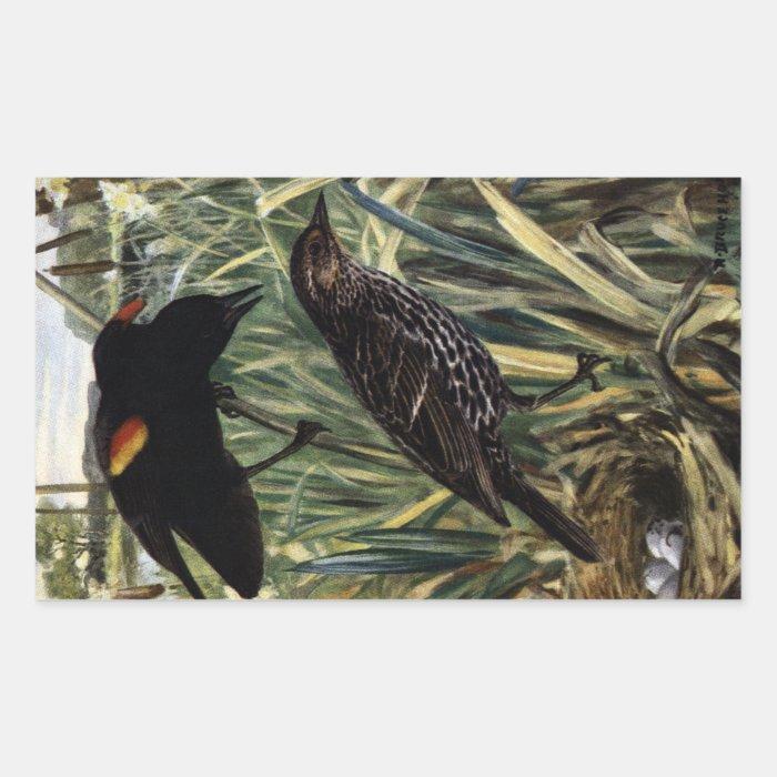 Red-Winged Blackbirds and Nest in Cattails Rectangular Sticker