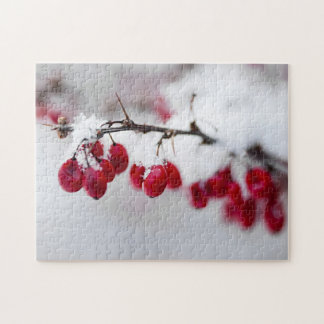 Red winter berries under snow puzzle