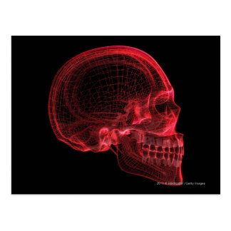 Red wireframe of a skull postcard