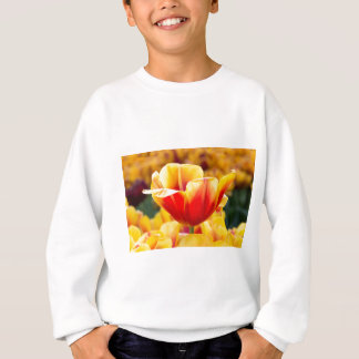Red with yellow tulip in flowers field sweatshirt