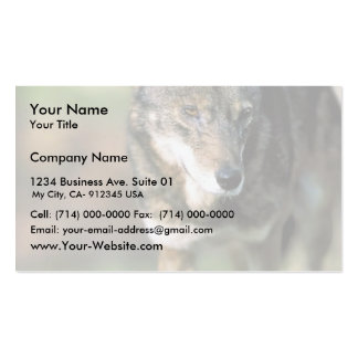 Red Wolf Business Card