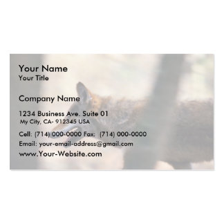 Red Wolf Business Cards