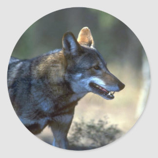 Red Wolf Classic Round Sticker