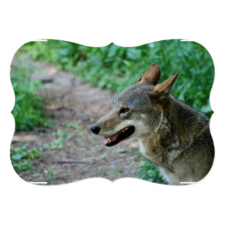 Red Wolf 5x7 Paper Invitation Card