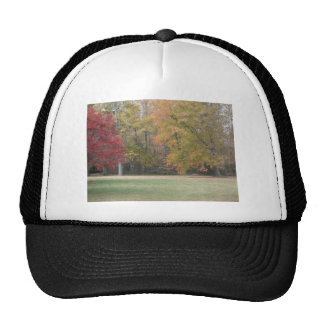 Red Yellow And Orange Leaves On The Trees With G Trucker Hats