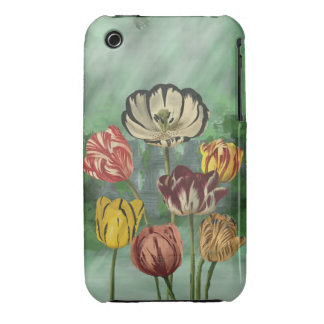 Red yellow and white tulips iPhone 3 cover