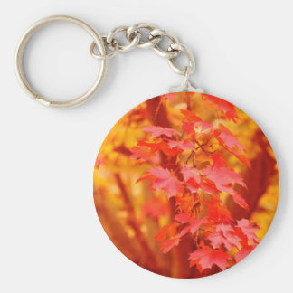 RED YELLOW AUTUMN LEAVES FALL MAPLE NATURE BEAUTY KEYCHAIN