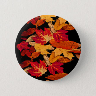 Red Yellow Brown Orange Autumn Leaves Button