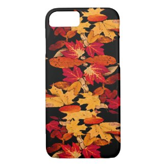 Red Yellow Brown Orange Autumn Leaves