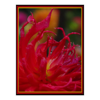 Red Yellow Flower Poster