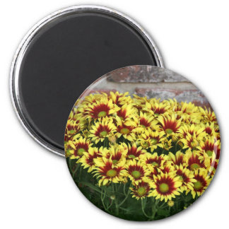 Red Yellow Flowers against brown red brick wall 2 Inch Round Magnet