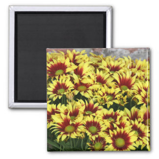 Red Yellow Flowers against brown red brick wall 2 Inch Square Magnet