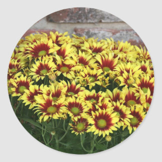 Red Yellow Flowers against brown red brick wall Classic Round Sticker