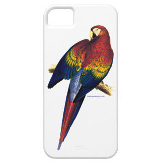 Red & Yellow Macaw by Edward Lear iPhone case
