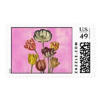 Red Yellow pink tulips on a pink wash background Stamps