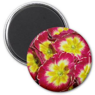 Red Yellow Primrose Magnet