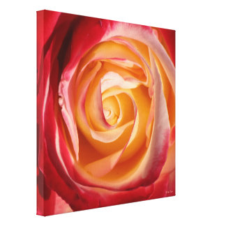 Red & Yellow Rose Canvas Print