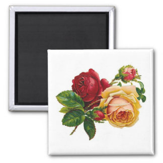 Red & Yellow Roses 2 Inch Square Magnet