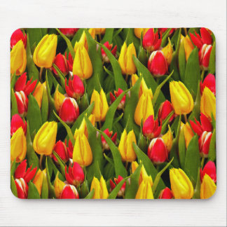 Red Yellow Tulip Flowers Photo Pattern Mousepads