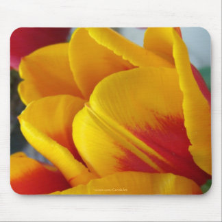 Red Yellow Tulip Mouse Pads