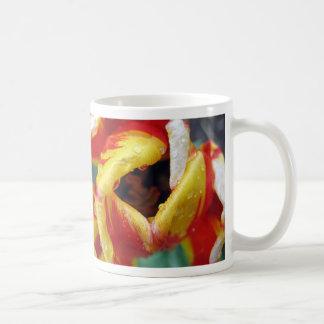 Red-Yellow Tulip Mug