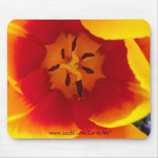 Red Yellow Tulips II Mouse Pad