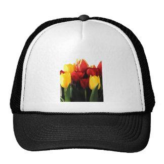 Red Yellow Tulips Trucker Hat