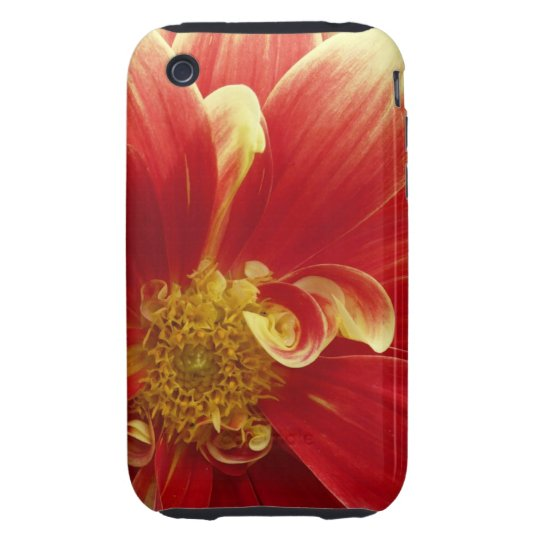 Red Zinnia 3G/GS iPhone Case