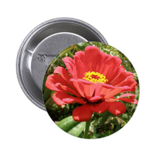 Red Zinnia Button
