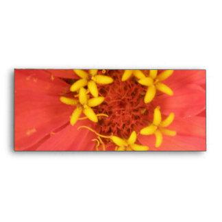 Red Zinnia Macro Envelopes