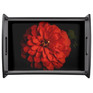 Red Zinnia Serving Tray
