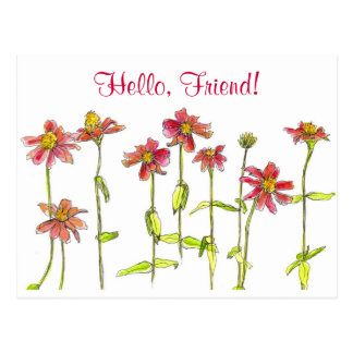 Red Zinnia Watercolor Flower Hello Friend Postcard