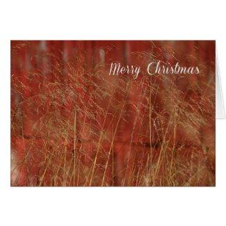 RedBarn Christmas